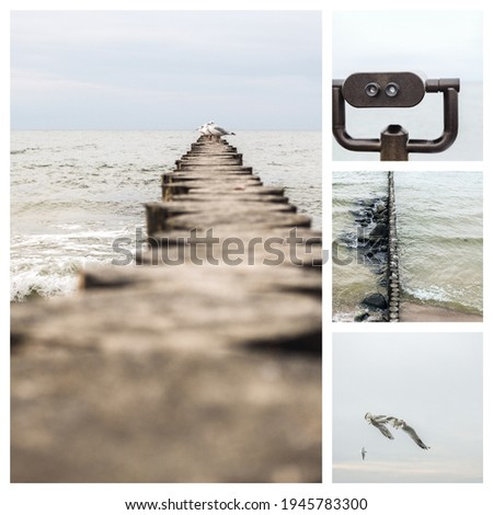 Collage of four pictures on the marine theme. Cloudy sea. Seagulls in the sky. Observation binoculars. Coastal breakwater.