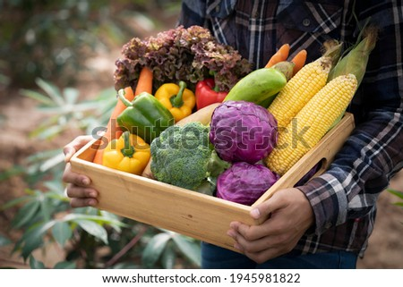 Young Asian man farmer with freshly picked vegetables in basket. Hand holding wooden box with vegetables in field. Fresh Organic Vegetables from local producers ready for transport. Royalty-Free Stock Photo #1945981822