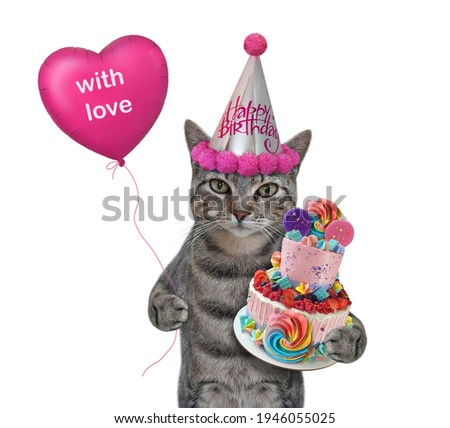 A gray cat in a party hat with a holiday cake and a pink balloon celebrates a birthday. White background. Isolated.