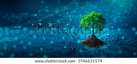 Tree with soil growing on  the converging point of computer circuit board. Blue light and wireframe network background. Green Computing, Green Technology, Green IT, csr, and IT ethics Concept. Royalty-Free Stock Photo #1946631574