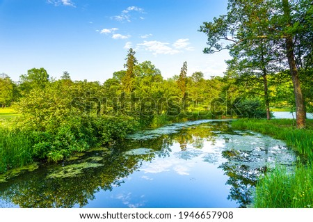 Summer green forest river water. Forest river in aummer. Summer river forest view Royalty-Free Stock Photo #1946657908