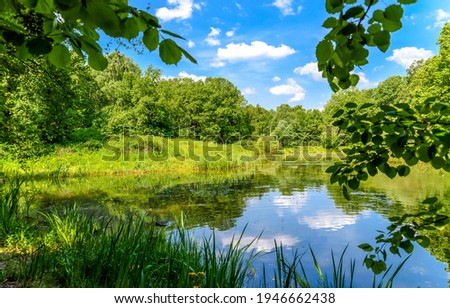Summer green forest pond landscape. Forest pond in summer. Summer green forest pond water. Summer pond Royalty-Free Stock Photo #1946662438