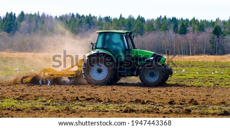 Spring disk plowing of the fallow (lea), cultivation with a disk harrow. Gulls as eaters of earthworms and insects