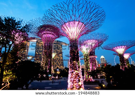 SINGAPORE - JANUARY 22: Night view of The Supertree Grove at Gardens near Marina Bay January 22, 2014 Singapore. Gardens by Bay was crowned World Building of Year at World Architecture Festival 2012 #194848883