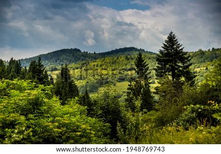 the panoramic view of landscape of the carpathian mountains, national park Skolivski beskidy, Lviv region of Western Ukraine Royalty-Free Stock Photo #1948769743