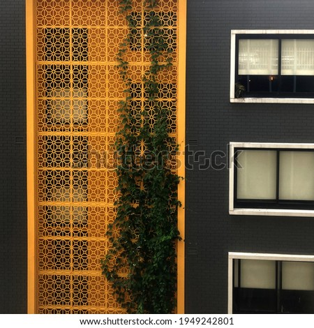 An apartment block with a bright yellow decorative privacy screen with foliage growing up the screen. Also pictured is a grey brick wall and windows Royalty-Free Stock Photo #1949242801