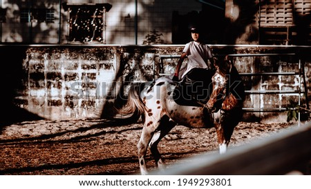 Dramatic Lowkey of 8 years old Muslim Asian girl riding horse or practicing in horse ranch.Image with light and shadow.