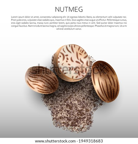 Culinary spices. Nutmeg. Abstract vector illustration of ground nutmeg on a light background. A blank for creativity. Royalty-Free Stock Photo #1949318683