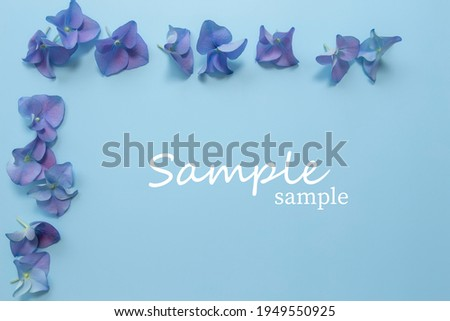 Flat lay with hydrangea or hortensia blue-purple petals on pastel blue background. Picture frame from flowers for greeting card or invitation. Sample text. High quality photo