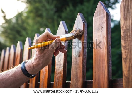 Man painting wood stain at timber plank in garden. Paint protective varnish on wooden picket fence at backyard Royalty-Free Stock Photo #1949836102