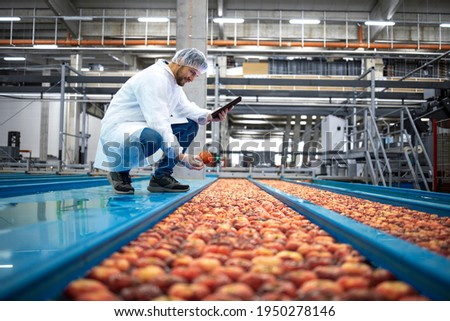 Technologist with tablet computer standing by water tank conveyers doing quality control of apple fruit production in food processing plant. Royalty-Free Stock Photo #1950278146