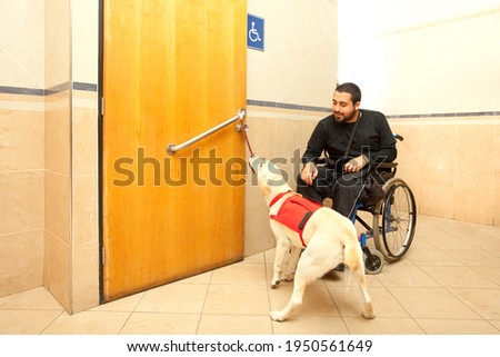 Man in wheelchair with the assistance of a trained dog at the bathroom of a supermarket