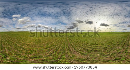 full seamless spherical hdri panorama 360 degrees angle view on among farming fields in summer day with awesome clouds in equirectangular projection, ready for VR AR virtual reality content Royalty-Free Stock Photo #1950773854