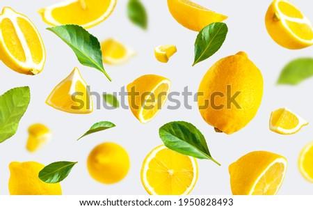 Juicy ripe flying yellow lemons, green leaves on light gray background. Creative food concept. Tropical organic fruit citrus vitamin C. Lemon slices Summer minimalistic bright fruit background Pattern Royalty-Free Stock Photo #1950828493