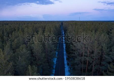 Asphalt road through the forest. Summer coniferous forest travel landscape. Long empty straight road and blue cloudy sky above. Royalty-Free Stock Photo #1950838618