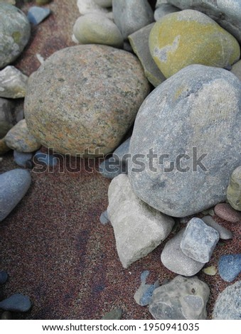 Beach Rocks and Sand. Beach feathers. Debris and animal signs on beach. stones tucked away. could be used for background, article, blog, diy message. there is a fossil on the big grey rock. macro shot
