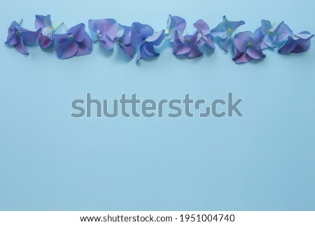 Flat lay with hydrangea or hortensia blue-purple petals on pastel blue background. Picture frame from flowers for greeting card or invitation. High quality photo