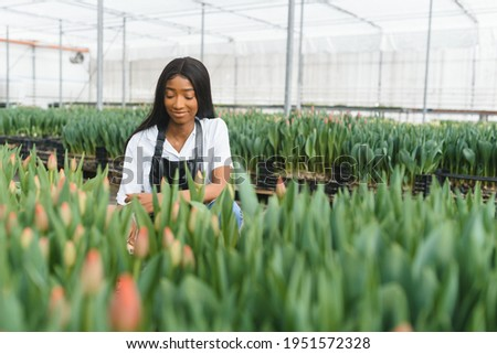 Agriculture management. Smiling african american girl makes photo of flowers plantation in greenhouse, side view, free space