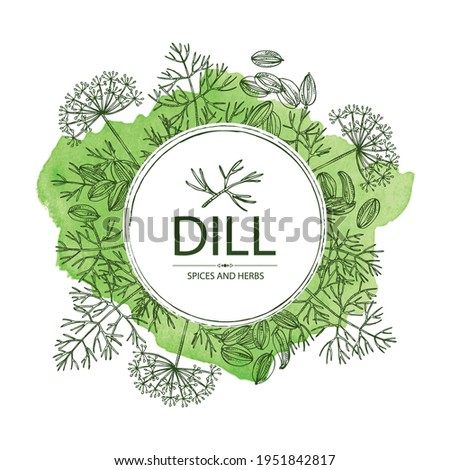 Watercolor background with dill: dill leaves and seeds. Herbs and spices. Vector hand drawn illustration. Royalty-Free Stock Photo #1951842817