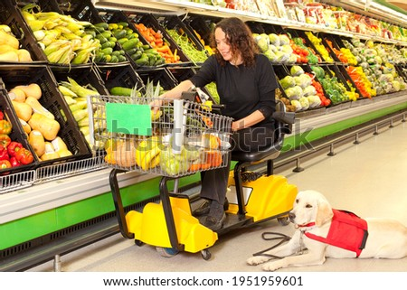 Woman in wheelchair with the assistance of a trained dog buying groceries at the market.