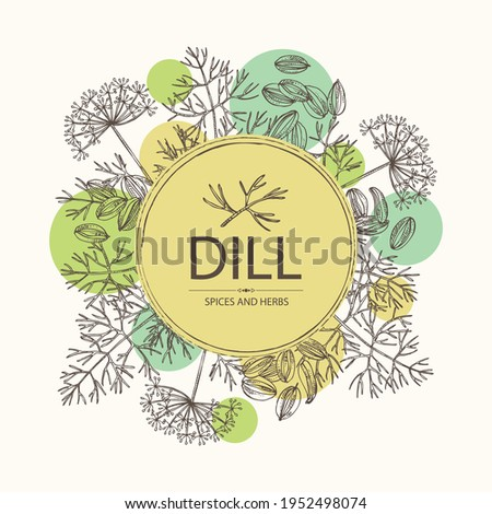 Background with dill: dill leaves and seeds. Herbs and spices. Vector hand drawn illustration. Royalty-Free Stock Photo #1952498074