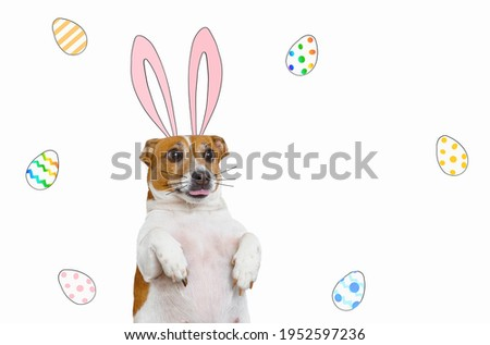 Cute dog with cartoon bunny ears surrounded by colored eggs on white background. Easter concept.