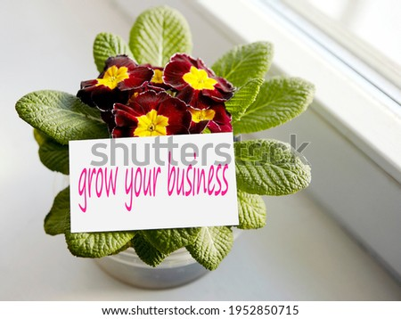 Photo of a colorful flower in a pot by the window. Caption: Grow your business.