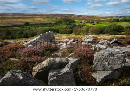Rugged moorland with large bouldersd including flowering wild heathers in the North York Moors National Park in summer near Goathland, Yorkshire, UK. Royalty-Free Stock Photo #1953670798