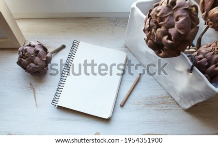 composition with a notebook and dried artichokes on a white old surface
