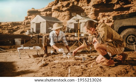 Archaeological Digging Site: Two Great Paleontologists Discovered Fossil Remains of Prehistoric Dinosaur, Clean it with Brushes. Archeologists Work on Excavation Site, Discover New Species Bones Royalty-Free Stock Photo #1955213026