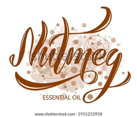 Vector illustration of Nutmeg Essential Oil text for logotype, packaging, banner, label, poster, decoration, postcard, cosmetics. Nutmeg Essential Oil calligraphy background. EPS 10. Royalty-Free Stock Photo #1955253958