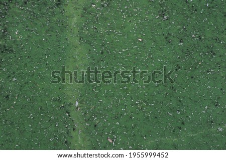 Vintage green concrete wall in shallow focus for interiors, art wallpaper or artistic texture background