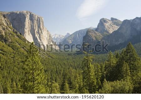 Yosemite National Park in California, United States of America #195620120