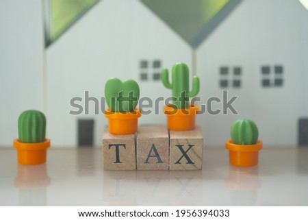 Wood words TAX and miniature cactus with wood home. The concept of property tax.