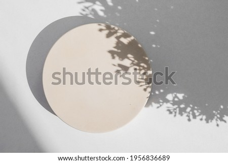 Abstract minimal scene with geometrical form. Cylinder podium on white background with floral shadow. Abstract background. Scene to show cosmetic podructs. Showcase, display case. 3d render. Royalty-Free Stock Photo #1956836689