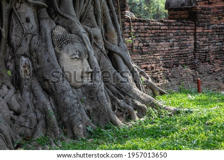 Historical Park A historical park in Ayutthaya, old city of Thailand  The old Buddha statue  Royalty-Free Stock Photo #1957013650