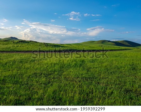 A panoramic view on a hilly landscape of Xilinhot in Inner Mongolia. Endless grassland with a few wildflowers between. Blue sky with thick, white clouds. Higher hills in the back. Mongolian grassland Royalty-Free Stock Photo #1959392299