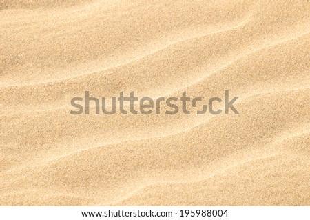 Texture Sand Dune Desert in Gran Canaria Island Spain #195988004