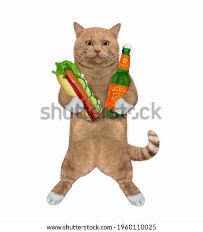 A reddish cat holds a bottle of beer and a hot dog. White background. Isolated.