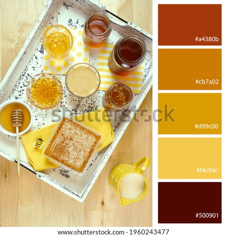 Designer Pack Color Palette inspired by the different types and colors of honey. Designer pack with photograph and swatches with hex codes references.
