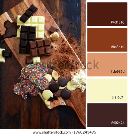 Designer Pack Color Palette inspired by the different types of chocolate. Designer pack with photograph and swatches with hex codes references.