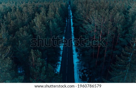 Forest road on a cloudy day. Glacier National Park, Montana, USA Royalty-Free Stock Photo #1960786579