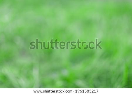 Defocused image. Defocused shot of grass. Royalty-Free Stock Photo #1961583217