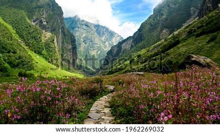 Valley of Flowers Trek (Uttarakhand) Royalty-Free Stock Photo #1962269032