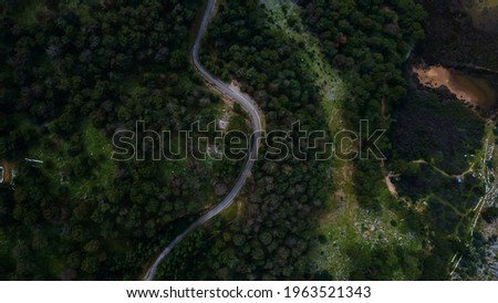 Aerial top view of country road in green summer forest . High quality photo