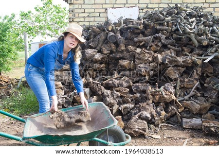 beautiful blonde farmer woman taking firewood and putting it on a handcart to transport it to the farmhouse Royalty-Free Stock Photo #1964038513