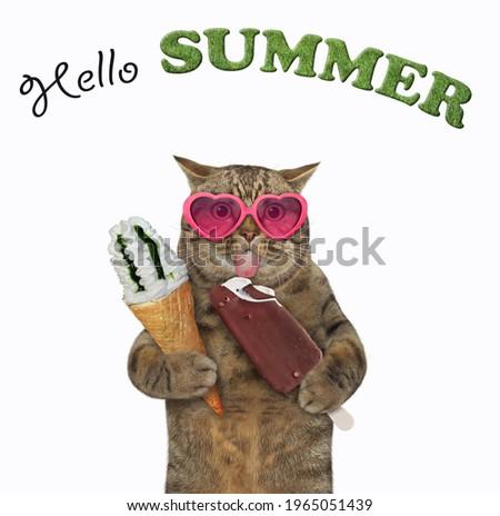 A beige cat in pink heart shaped sunglasses holds two ice creams. Hello summer. White background. Isolated.