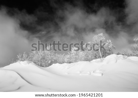 A black and white photo of a scenic frozen mountain forest on top of high snow drifts under snow clouds.