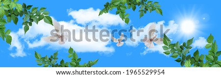stretch ceiling picture corridor and living room models sunny sky, clouds, tree leaves and flying white doves