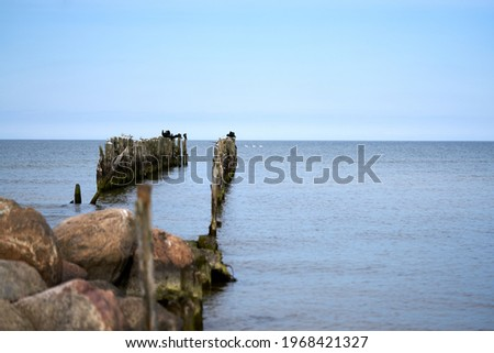 Battered wooden piles of the old pier in the Baltic Sea, leaving the horizon Royalty-Free Stock Photo #1968421327